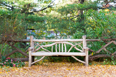 yellow ochre: Wooden bench in Central park during the fall Stock Photo