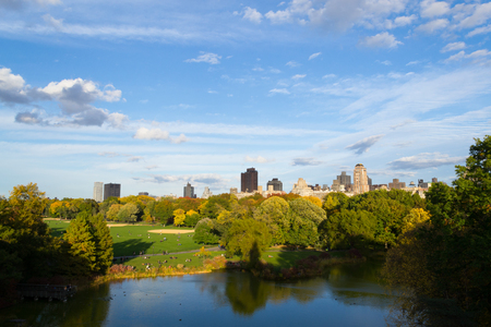yellow ochre: The great lawn seen from the Belvedere castle are one of the best spots to see the fall colors in Central Park Editorial