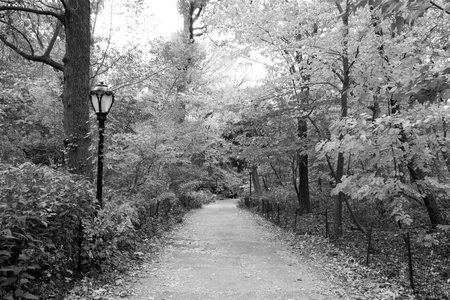 streifzug: One of the multiple quiet paths in the area of Central Park called the Ramble