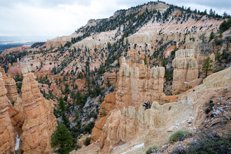 geological feature: Bryce Canyon in Utah with its geological feature the Hoodoos
