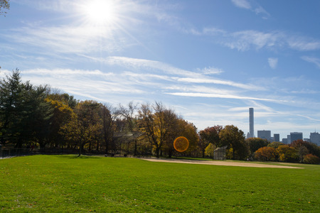 The Grat lawn in Central park is the most iconic gathering spot of the whole park where high scale concerts and events take place