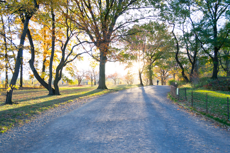 Bridle path goes around the Jacqueline Kennedy Onassis reservoir in Central park