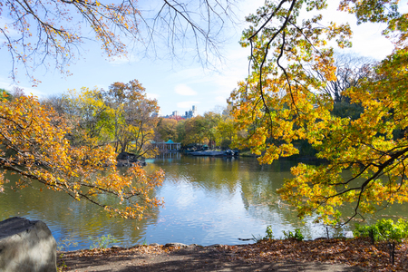 Fall in Central Park (NYC)