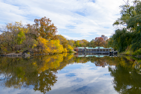bethesda: The Lake together with the Ramble are are one of the main features of central park and were designed by  Frederick Law Olmsted and Calvert Vaux