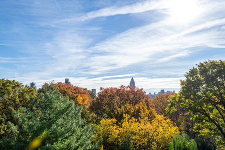 From the top of the Belvedere Castle in Central park you can enjoy great views of the turtle pond, Upper East and West sides as well as the great lawn.