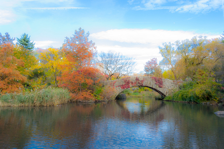 melancholy: Gapstow bridge is the most iconic bridge of Central Park with fenomenal views of the midtown skyline
