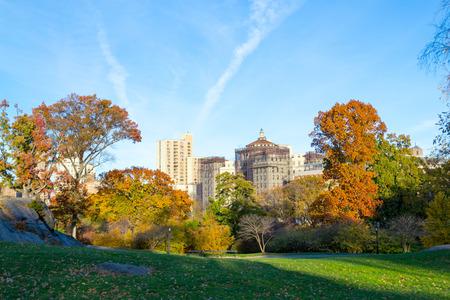 monte sinai: Césped en el Parque Central por la Escuela de Medicina Mount Sinai