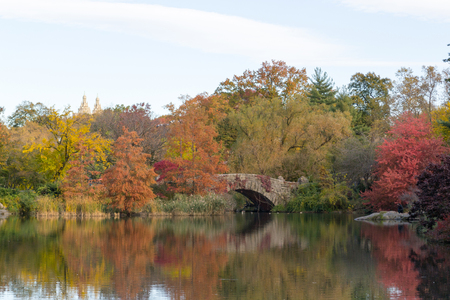 Gapstow bridge is the most iconic bridge of Central Park with fenomenal views of the midtown skyline