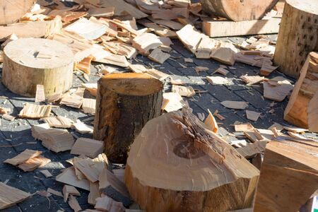 Cut beech trunk after St. Thomas wood chopping competition in Bilbao Stock Photo