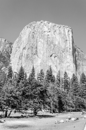 El Capitan at Yosemite National Park from the bottom of the valley Stock Photo
