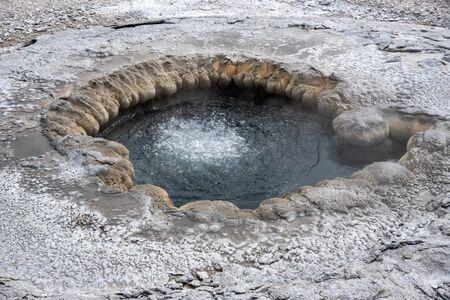 Aurum geyser before an eruption in the upper geyser basin in Yellowstone