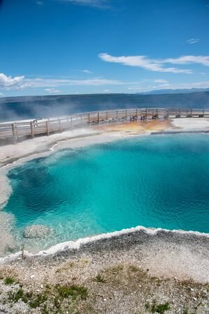 Hot springs in Yellowstone of vivid colors caused by thermophilic bacteria