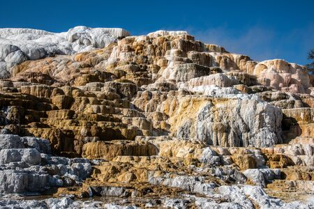Minerva Terraces at the lower Mammoth Hot Springs in YellowstoneNational Park 版權商用圖片