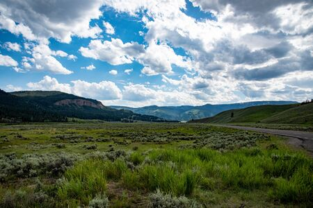 Plains at Lamar valley in Yellowstone