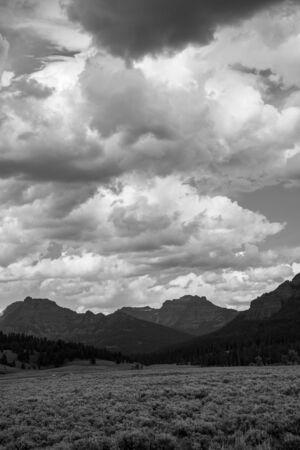 Llanuras en el valle de Lamar en Yellowstone.