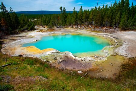 Emerald hot spring in Yellowstone of vivid colors caused by thermophilic bacteria