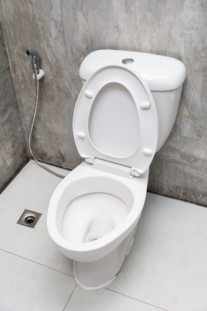 hemorrhoid: Home flush toilet top view, close up in bathroom