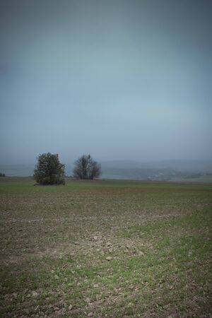 Misty field in autumn Stok Fotoğraf