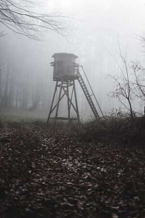 Wooden high seat in a foggy forest