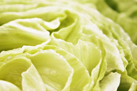 Frsh salad Stock Photo