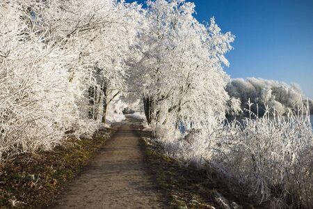 Path through winter landscape