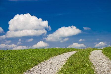 Tracks through a green field