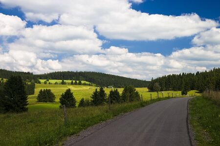 Rural road in the black forest low mountain range (Schwarzwald)