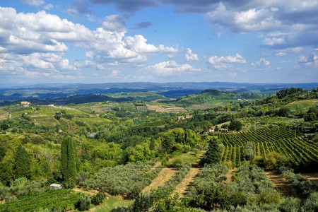 Panoramic view of the Region Tuscany, Italy. Stockfoto - 115737975