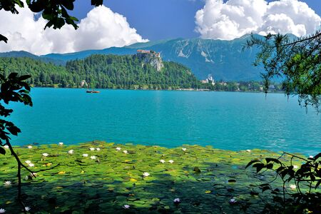 The beautiful medieval castle and Lake Bled, Slovenia. 스톡 콘텐츠