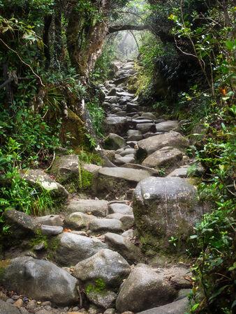 マレーシア ・ サバ州、キナバル山で岩の歩道 写真素材