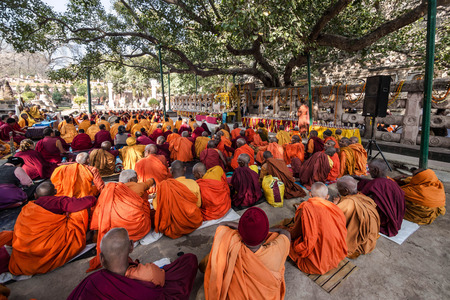Buddhist Monks Sitting Under the Bodhi Tree at Mahabodhi Temple in Bodhgaya, India