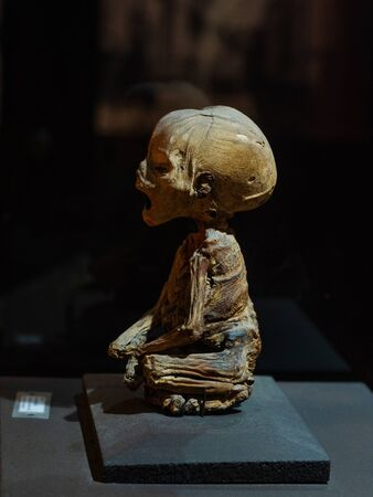 The Smallest Mummy in the World, Displayed at the Guanajuato Mummy Museum in Guanajuato, Mexico