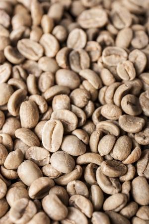 unroasted: Unroasted Columbia Coffee Green Bean Closeup