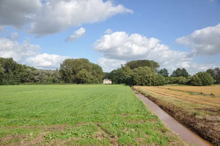 Landscape with green and yellow field, manor, ditch, trees, blue sky and clouds Stock Photo - 8728940