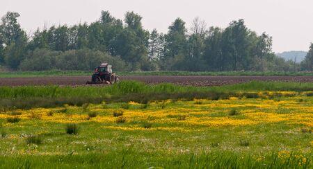 drimmelen: Drimmelen, North-Brabant, Netherlands, April 29, 2011,  Harrowing in a colorful spring landscape Editorial