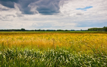 Colorful Dutch landscape with a rich clouds sky Stock Photo - 9885607