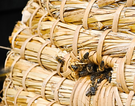 Closeup of the entrance of a traditional bee skep photo