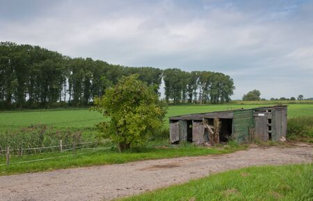 Dilapidated barn in a Dutch landscape photo