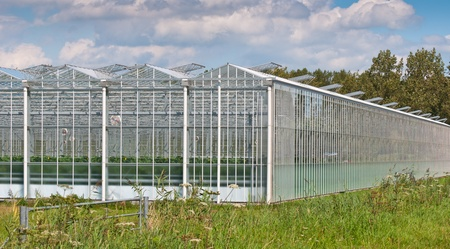 Close up of a modern Dutch greenhouse complex with open glass panels photo