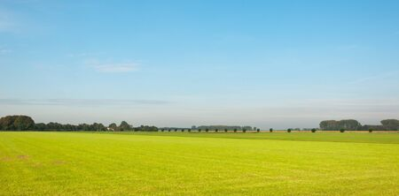 Colorful summer landscape in the neighborhood of the village of Drimmelen in the Netherlands. Stock Photo - 10756734