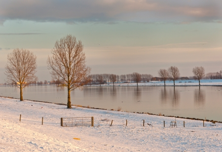 birds scenery: Low sunlight over the river Bergse Maas in the Netherlands