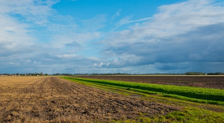 Colorful agricultural fields on the outskirts of a Dutch village Stock Photo - 10977528