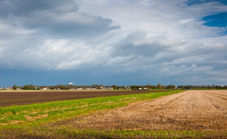 Colorful agricultural fields on the outskirts of a Dutch village Stock Photo - 10977529