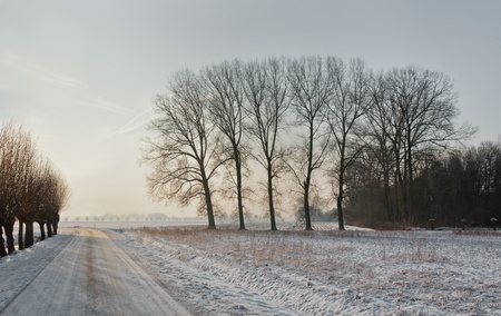 drimmelen: A snowy curved country road in the Netherlands Stock Photo