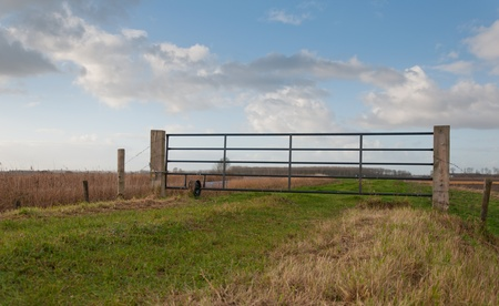 Autumn landscape with a steel fence on a path. photo