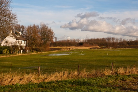 Dutch landscape in the hamlet Noordschans (municipality of Moerdijk) with a wet grassland and a white house next to it. photo