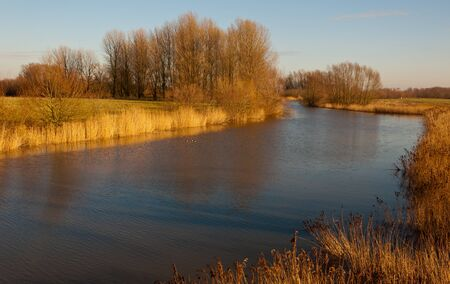 View of the Dutch nature reserve