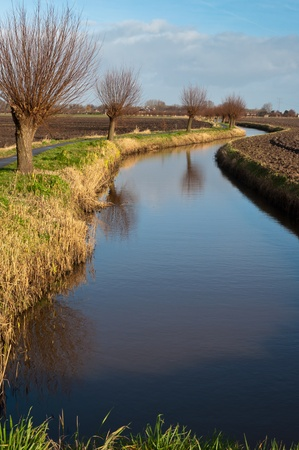 drimmelen: Polder landscape in the Netherlands with a curved ditch and pollard willows. In the background the outline of the village of Drimmelen. Stock Photo