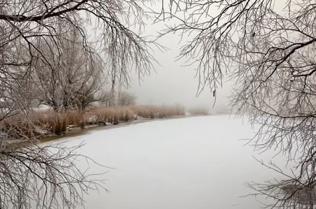 Unspoiled snow on the ice of a natural pond. It is very early in the morning and it freezes very much in the Netherlands. The morning mist still hangs over the landscape. The view is limited and less colorful. Stock Photo - 12307214