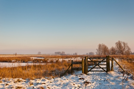 Winter landscape in the Netherlands with a wooden fence. Stock Photo - 12295144